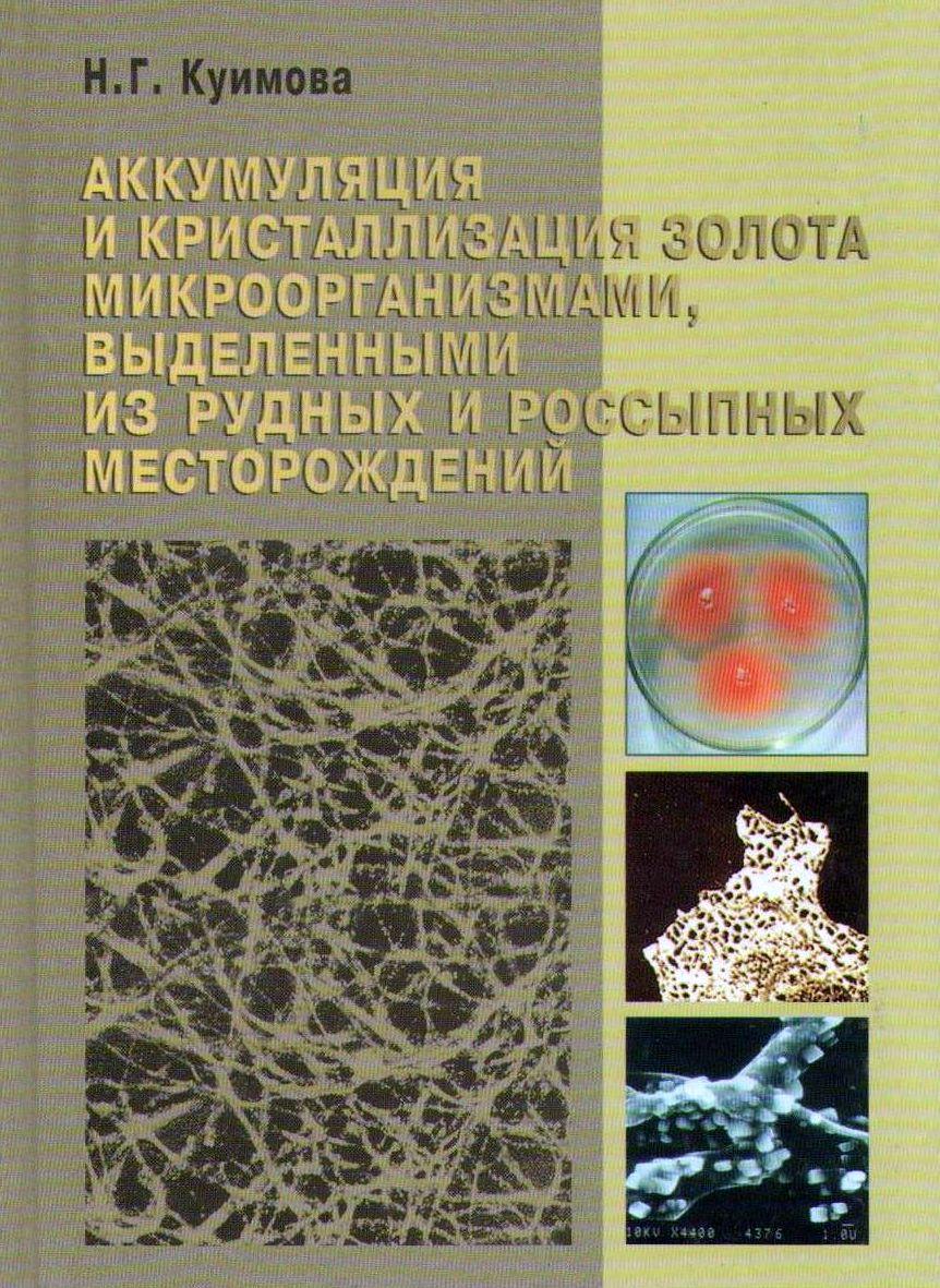 Аккумуляция и кристаллизация золота микроорганизмами