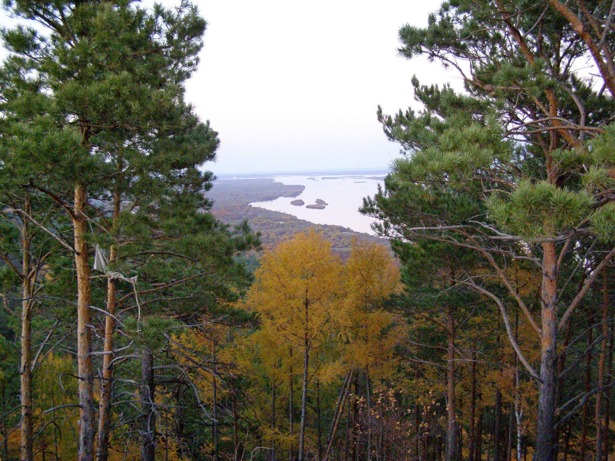 http://botsad-amur.ru/wp-content/uploads/2019/01/1900-Muhinka_3.jpg